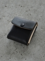 Aeta Coin Case